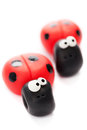 Ladybirds Royalty Free Stock Photo