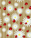 Ladybug and daisy - seamless texture Stock Photo