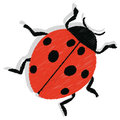 Ladybug illustration of a isolated on white background Stock Photo