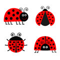 Ladybug Ladybird icon set. Baby background. Funny insect. Flat design Isolated Royalty Free Stock Photo