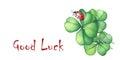Ladybug sitting on a green four leaf clover. Good Luck.