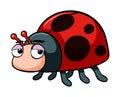 Ladybug with sleepy eyes