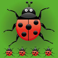 Ladybugs Stock Photo