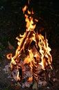 Lag Ba'Omer Jewish Holiday Bonfire Royalty Free Stock Photo