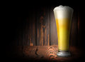 Lager beer on a dark background Royalty Free Stock Photos