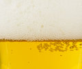 Lager light Beer texture with foam Stock Photography
