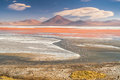 Laguna colorada in bolivian altiplano Royalty Free Stock Images