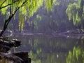 Lake Стоковые Фото