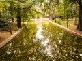 Lake in autumn season beautiful cismigiu park bucharest romania Royalty Free Stock Photos