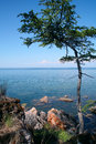Lake baikal rocky shore of the the in the summer sun light Royalty Free Stock Photo