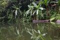 Lake Balinsasayao In Dumaguete...