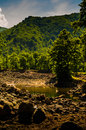 Lake bed after ebb tide visible of in a sunny day during surrounded with trees woodland and green hills on the horizon located in Stock Photos