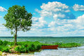 Lake boat and tree beautiful summer view of lone Stock Photo