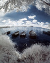 Lake and boats in Poland (fisheye) Royalty Free Stock Photography