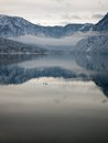 Lake bohinj landscape of the in winter with bad weather slovenia Stock Photos
