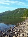Lake bottom Multa, mountain Altai 7 Royalty Free Stock Photo