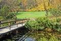 Lake and bridge Royalty Free Stock Photography