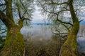 Lake Chiemsee at dusk Royalty Free Stock Photo