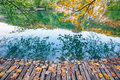 Lake with crystal clear water in the sunshine. Plitvice lakes Royalty Free Stock Photo