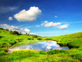 Lake on the green meadow beautiful natural landscape Royalty Free Stock Image