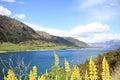 Lake hawea New Zealand Royalty Free Stock Photo