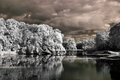 Lake in infrared Stock Photo