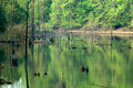 Lake Isaac Royalty Free Stock Photo
