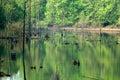 Lake Isaac Royalty Free Stock Photo