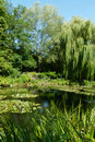 Lake in landscaped gardens scenic view of pond or monerancets with leafy green trees background flroida u s a Stock Image