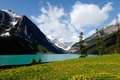 Lake louise in spring canadian rockies canada and small flowers at the lakeside inscribed on the unesco world heritage list Royalty Free Stock Photos