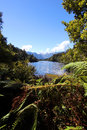 Lake matheson mt cook new zealnd south island look from tropical forest to the with reflection of Royalty Free Stock Photography
