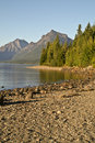 Lake McDonald, berg och Trees Royaltyfri Bild