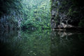 Lake mirror in perak malaysia with dreamy and blurry effects Stock Image