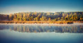 Lake at misty dawn with blue sky and trees reflected on it Stock Photography