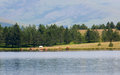 Lake on Mount Zlatibor Royalty Free Stock Photo