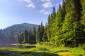 Lake in the mountains surrounded by a pine forest early morning Stock Photography