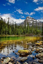 Lake O`Hara Royalty Free Stock Photo