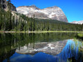 Lake o hara yoho national park canada british columbia Stock Image