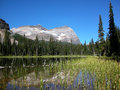 Lake o hara yoho national park canada british columbia Royalty Free Stock Images