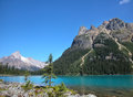 Lake o hara yoho national park canada british columbia Royalty Free Stock Photos