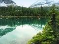 Lake o hara yoho national park canada british columbia Royalty Free Stock Photography