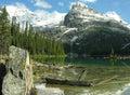 Lake o hara yoho national park canada british columbia Royalty Free Stock Images