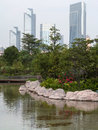 Lake plants and edifices Stock Image