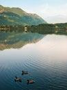 Lake and reflections Stock Photo
