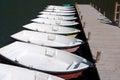 Lake rental boats row Royalty Free Stock Photo