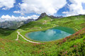 Lake riezler alpsee with alpine roses allgau alps blooming in the middle the mountain peak of the kanzelwand on the right the Royalty Free Stock Images
