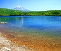 Mount Fuji from Lake Shoji Royalty Free Stock Photo