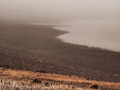 Lake shore in the fog undulating shape of on a foggy day Royalty Free Stock Images