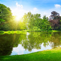 Lake in the summer park scenic Royalty Free Stock Photos