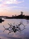 Lake at sunset the of the near village of vaqueiros on algarve portugal Royalty Free Stock Image